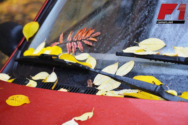รู้หรือไม่!! จอดรถใต้ต้นไม้ร้ายกว่าที่คิด F1rumors Car Bigbike Motorsport ผลเสียจอดรถใต้ต้นไม้