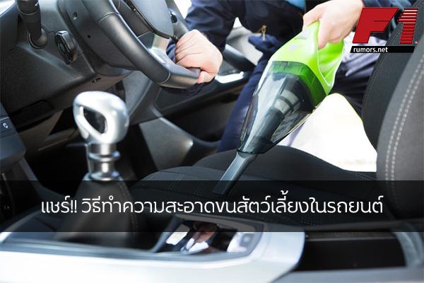 แชร์!! วิธีทำความสะอาดขนสัตว์เลี้ยงในรถยนต์ F1rumors Car Bigbike Motorsport Honda วิธีทำความสะอาดขนสัตว์เลี้ยง